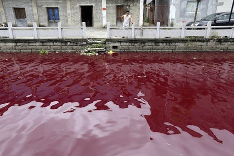 Shocking Photos Show How Polluted China's Water Has Become | Sustain Our Earth | Scoop.it