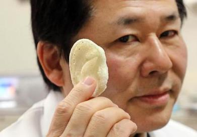 Japan Researchers Target 3D-Printed Body Parts | Dental Implant and Bone Regeneration | Scoop.it