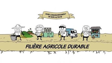 Qu'est-ce qu'une filière agricole durable ? | Comprendre le réel intérêt de produire une agriculture BIO en France plutôt que d'importer des produits présentant un label pas vraiment Certifié. | Scoop.it