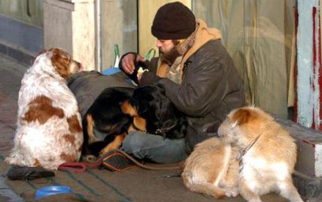 Des mendiants droguent leurs chiens pour attendrir les passants | CaniCatNews-actualité | Scoop.it