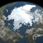 Arctic Ocean: Carbon Sink or Carbon Source? | EcoWatch | Scoop.it