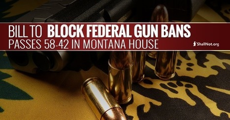 Montana House Passes Bill to Block Federal Gun Bans, 58-42 | Criminal Justice in America | Scoop.it