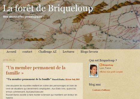 Blog du jour (112) : Briqueloup | Charentonneau | Scoop.it