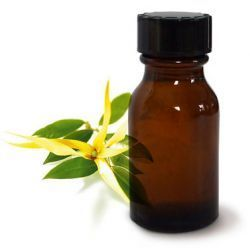 Huile ylang ylang : Mes meilleures recettes et astuces | Huiles essentielles et remèdes naturels | Scoop.it