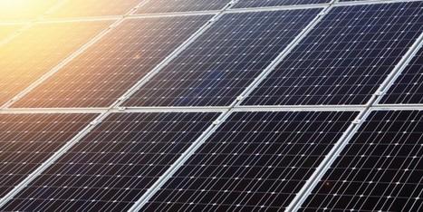 Vivere sostenibile | Editoria e Comunicazione scientifica | Scoop.it