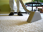 Carpet Cleaning Services in Burwood, Mount Waverley, Caulfield & Glen Waverly | Chris Cleaning | Carpet Cleaning Brighton | Scoop.it