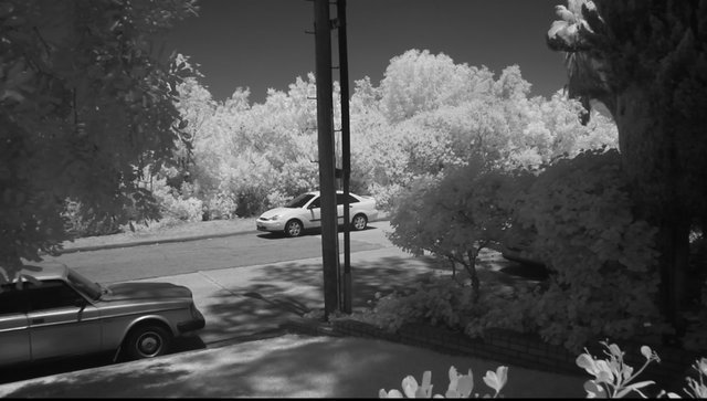 InfraRed digital video from a Canon 50D via Mag...