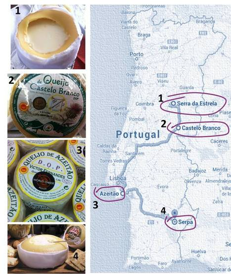 4 Thistle rennet cheeses. The Art of cheesemaking | Portuguese Awarded Gourmet Products | Scoop.it