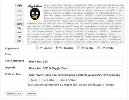 Optimisation SEO de Wordpress   Pink Seo - Another SEO blog   Web & Internet   Scoop.it