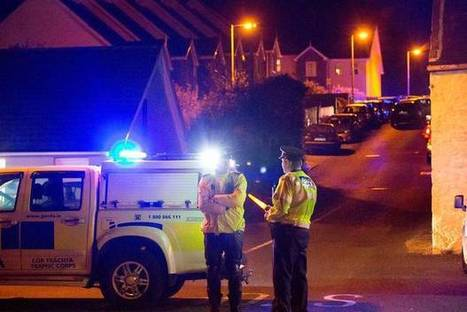 Garda shot dead and woman seriously injured - gunman takes his own life in incident in Co Louth - Independent.ie | Criminology and Economic Theory | Scoop.it