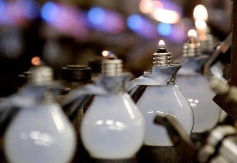 140000 ampoules recyclées depuis 2007 | Ampoule Led | Scoop.it