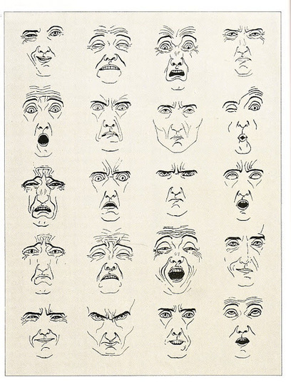Drawing References Face Drawing Faces And Gestures