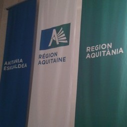 Langues régionales : quelle politique linguistique ? | Groupe des élu/es écologistes – Conseil régional d\'Aquitaine | Elu-es écologistes au Conseil régional d'Aquitaine | Scoop.it