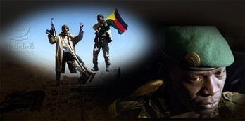 Afrique : le Mali sur tous les fronts - Le dossier spécial de RFI remis à jour en temps réel | LYFtv - Lyon | Scoop.it