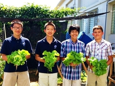 From Modern Farm to Sustainable Table: Teaching STEM and Humanities with Authenticity | SPS Tech Department | Scoop.it