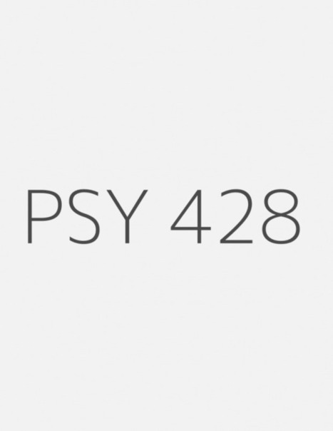 """PSY 428 Week 3 Individual Assignment: """"Improving Organizational Performance"""" Simulation Summary 
