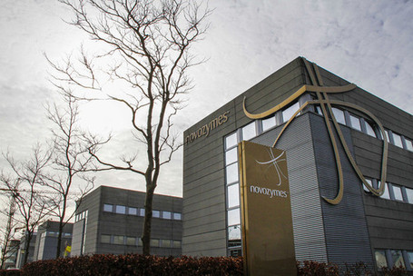 Toxic Toast Concerns Feed Food Enzyme Sales at Novozymes to DSM | Food issues | Scoop.it