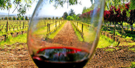 La bouche à l'oreille et le conseil du caviste sont les plus forts | Le Vin et + encore | Scoop.it
