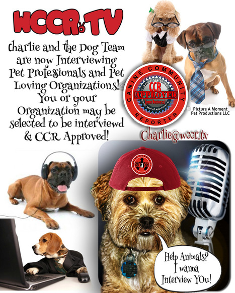 Want an Interview with Charlie Tarochione? | The Canine Chefs | Scoop.it