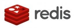 Le Touilleur Express » Blog Archive » Redis, découverte d'un moteur clé-valeur simple et puissant | Web development page | Scoop.it