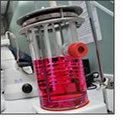 Crean equipo biológico para cultivar piel | Biochemical Engineering | Scoop.it