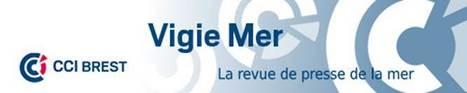 Vigie Mer | Les algues en Bretagne | Scoop.it