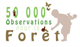 50 000 Observations pour la Forêt - Forêt Privée Française, le portail des forestiers privés - Actualités / Dépêches   Territoires apprenants, sciences participatives, partages de savoirs   Scoop.it