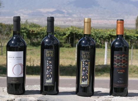 Las bodegas del Tucumán irrumpen en el mercado con vinos de ... - iprofesional.com (Comunicado de prensa) | ciencias basicas | Scoop.it