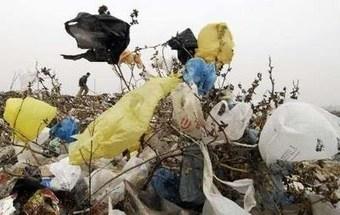 Las bolsas plásticas, uno de los mas innecesarios y mayores contaminantes del planeta | Ecocosas | Educacion, ecologia y TIC | Scoop.it