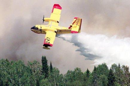 Vers des incendies de forêt plus étendus   Élément terre   Scoop.it