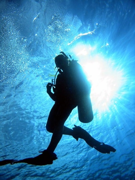 Diver Situation! | All about water, the oceans, environmental issues | Scoop.it