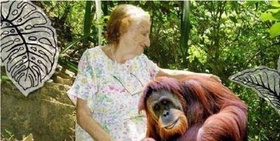 Francine, 86 ans,une des plus éminentes spécialiste des grands singes française, a échoué incognito à la rue, avant d'être recueillie par le Samu social. Une...   Biodiversité   Scoop.it