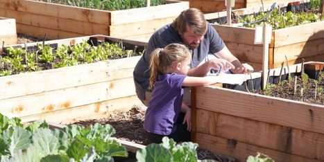 Become A Food Bank Gardener To Help Those In Need | Vertical Farm - Food Factory | Scoop.it