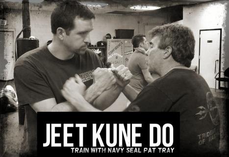 Jeet Kune Do Schools VA | Martial Arts Northern Virginia | MMA n' BJJ in Northern VA | Scoop.it