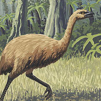 Fossil Poo Reveals Where Ancient Giant Bird Ate - Discovery News | archaeology | Scoop.it