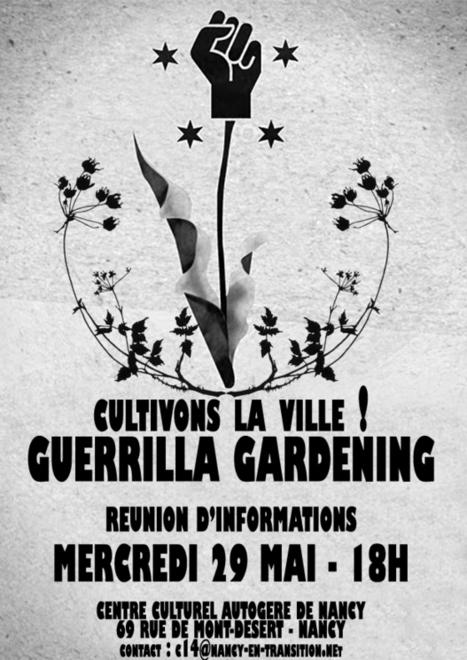 Guerilla gardening France | | Villes | Scoop.it
