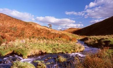 Highland Spring now Britain's favourite bottled water | coursework | Scoop.it