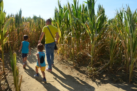 Con i Maya, in un labirinto di mais | Travelling with kids | Scoop.it