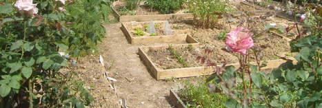 Création d'un jardin partagé dans le quartier des Hauts de Malesherbes | (Culture)s (Urbaine)s | Scoop.it
