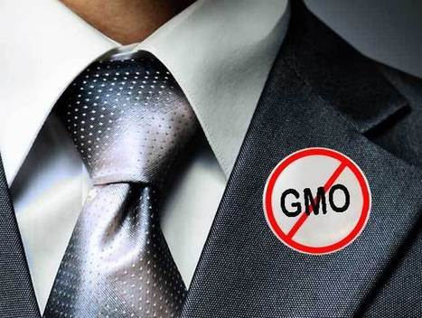 Is Monsanto giving up on GMOs? | Food issues | Scoop.it