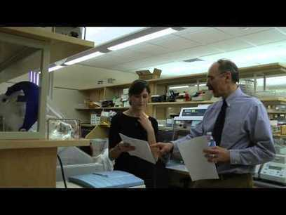 Borrelia miyamotoi Infection - The new deer tick-borne disease | Diseases and Treatments | Scoop.it