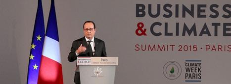 Business et climat : les entreprises montrent patte verte | Actualités écologie | Scoop.it