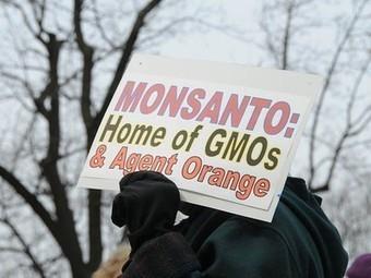 Connecticut Fears Monsanto - Bill to Label GM Ingredients Dead Due to Lawsuit Worries | Vertical Farm - Food Factory | Scoop.it