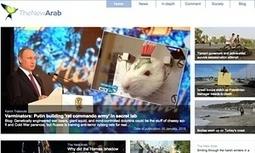 Saudi Arabia, UAE and Egypt block access to Qatari-owned news website | Information wars | Scoop.it
