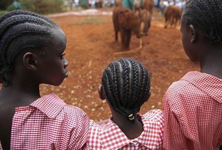 L'Afrique à la veille d'une grande transition démographique | Tenter de comprendre le monde moderne | Scoop.it