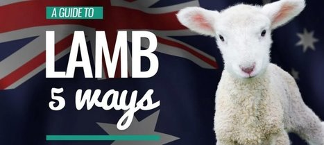 VIDEO: The unexpected guide to lamb — 5 ways | Nature Animals humankind | Scoop.it