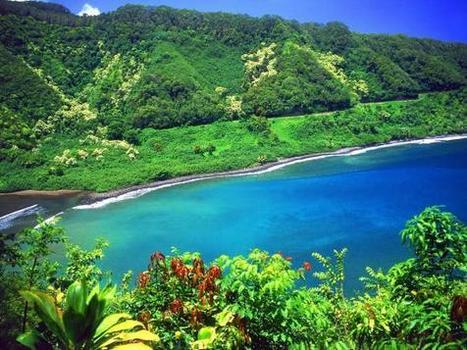 Isla del Coco, explosión de naturaleza - Lonely Planet Traveller   Noticias y Blogs de Viajes   Scoop.it
