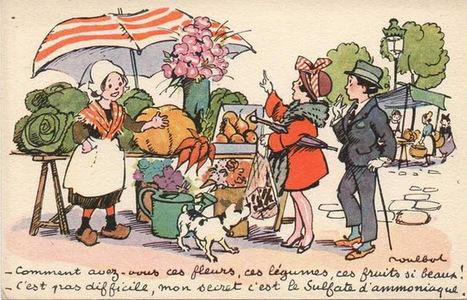 Ah, les beaux fruits ! Vive le sulfate, gare au poison ! | Toxique, soyons vigilant ! | Scoop.it