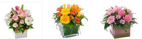 Now You can Place Your Flower Orders From Your iPhon   Press Release   Scoop.it