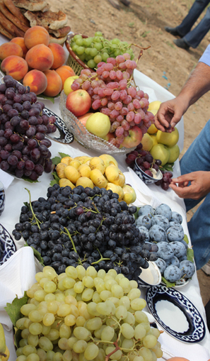 Uzbek farmers get a livelihood boost from local fruit tree conservation | Agricultural Biodiversity | Scoop.it